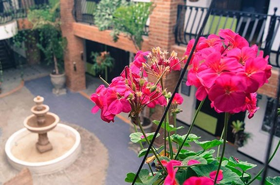 Long Stay Salento Real Eje Cafetero Hotel